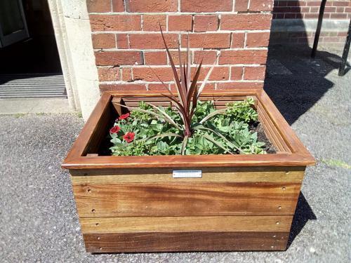Hardwood Planter